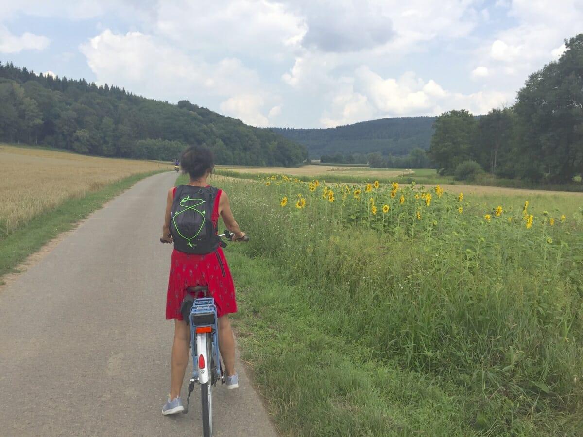 """Radweg """"Liebliches Taubertal"""" ,eBike, Taubertal, Radwandern, Wertheim, Main, Tauber"""